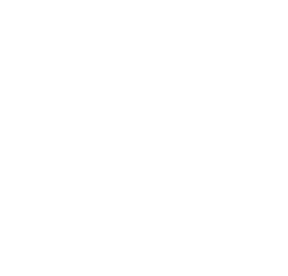 Champagne Caillez Lemaire - Damery