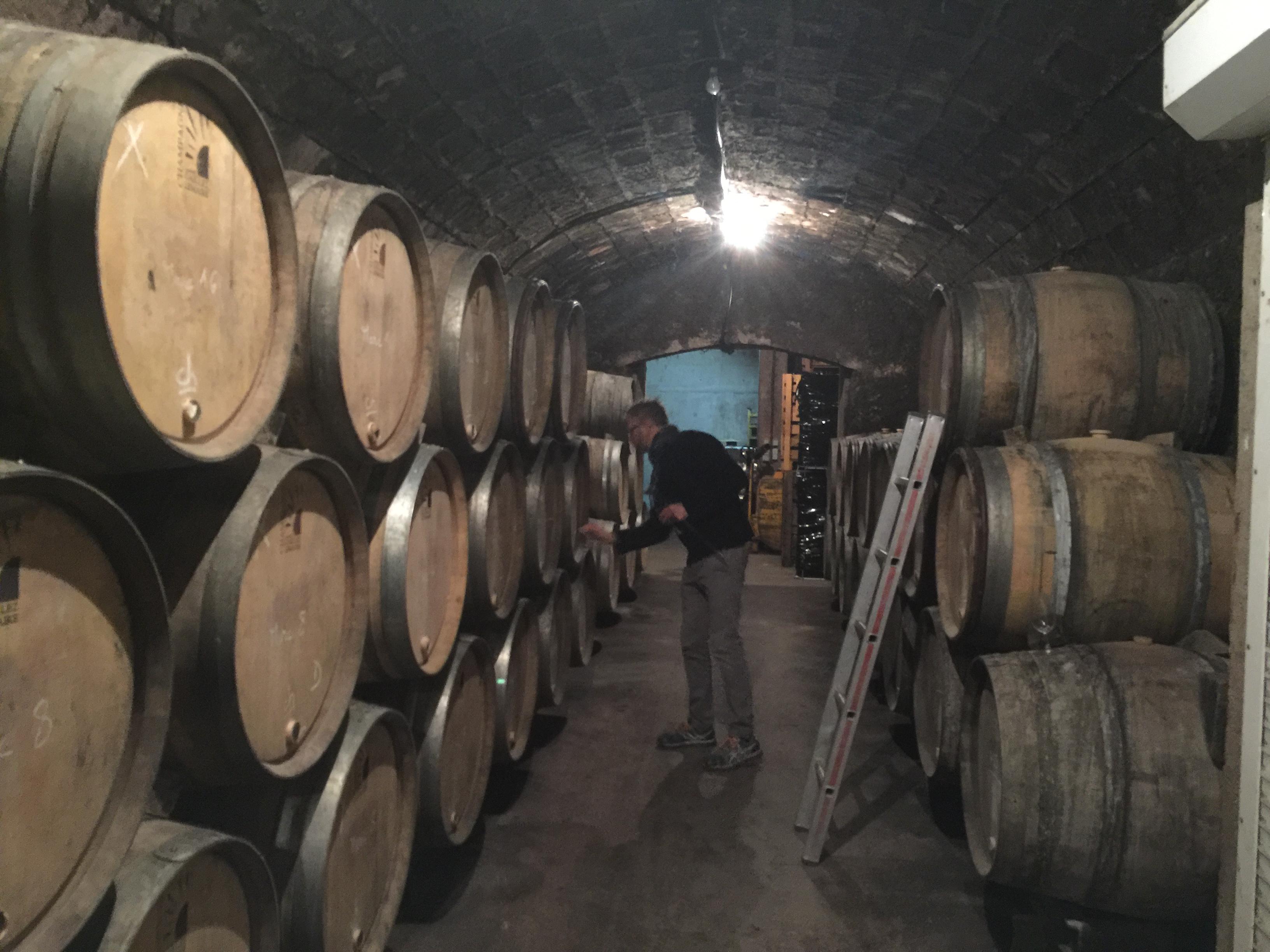 Choix des tonneaux pour l'assemblage Chardonnay Pinot Noir Meunier