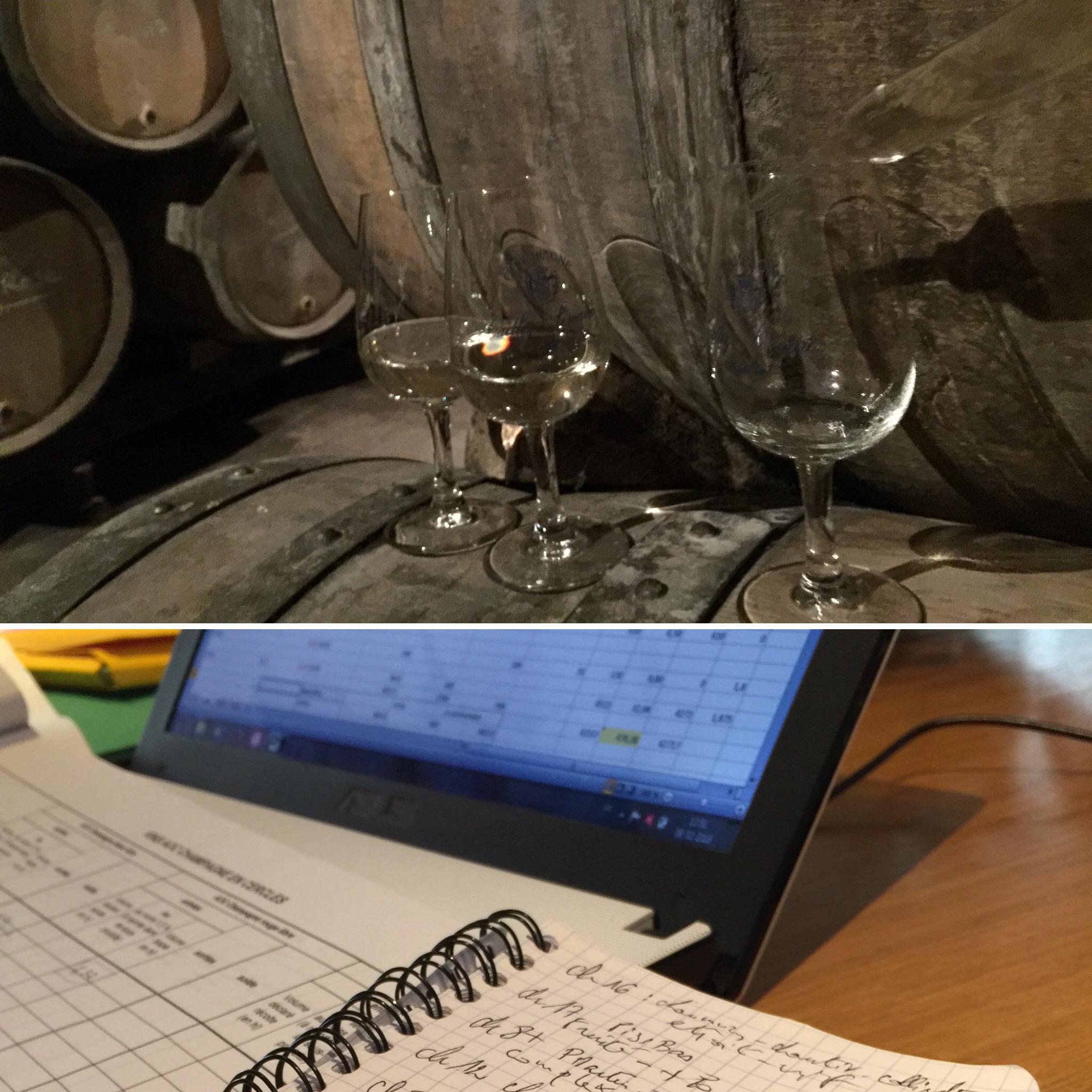 Blending Chardonnay Pinot Noir Meunier Vin clair 2017 Caillez Lemaire